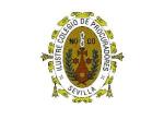 colegio oficial de procuradores de sevilla