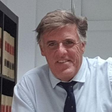 D. Javier Alés docente de Mediación